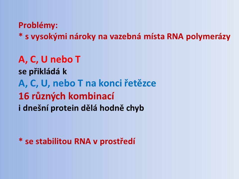 Problémy: * s vysokými nároky na vazebná místa RNA polymerázy A, C, U nebo T se přikládá k A, C, U, nebo T na konci řetězce 16 různých kombinací i dnešní protein dělá hodně chyb * se stabilitou RNA v prostředí