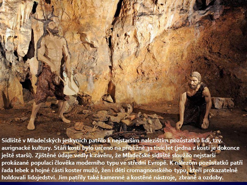 Sídliště v Mladečských jeskyních patřilo k nejstarším nalezištím pozůstatků lidí, tzv.