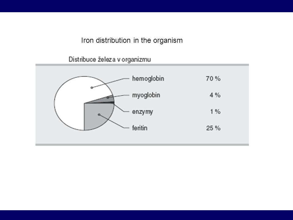 Iron distribution in the organism