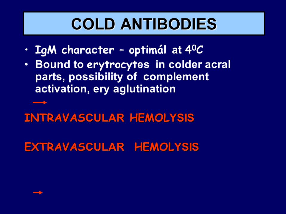 COLD ANTIBODIES IgM chara c ter – optimál at 4 0 C Bound to erytrocyt es in colder acral parts, possibility of complement activation, ery aglutination INTRAVAS CULAR HEMOL YSIS EXTRAVAS CULAR HEMOL YSIS