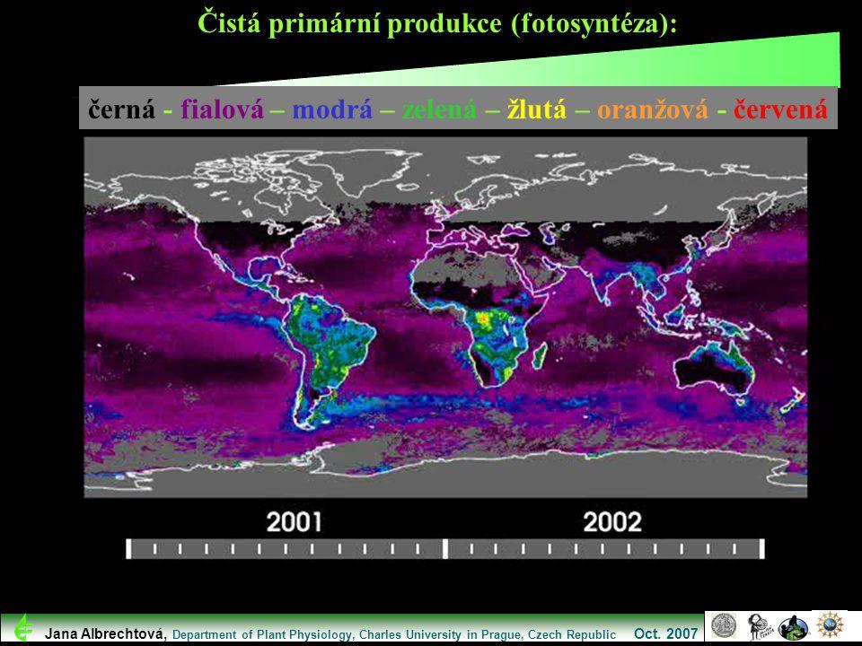 Čistá primární produkce (fotosyntéza): Jana Albrechtová, Department of Plant Physiology, Charles University in Prague, Czech Republic Oct. 2007 černá