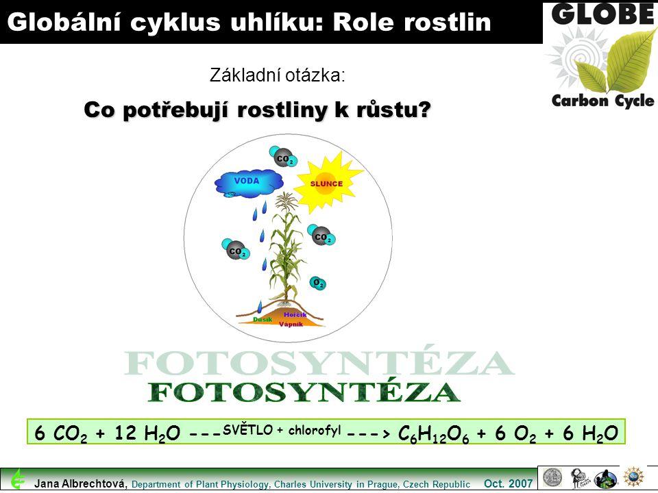 Globální cyklus uhlíku: Role rostlin 6 CO 2 + 12 H 2 O --- SVĚTLO + chlorofyl ---> C 6 H 12 O 6 + 6 O 2 + 6 H 2 O Co potřebují rostliny k růstu? Zákla