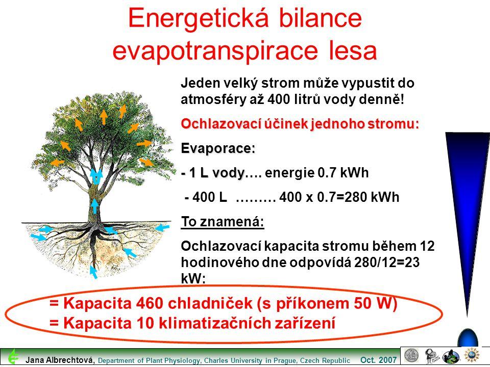 Jeden velký strom může vypustit do atmosféry až 400 litrů vody denně! Ochlazovací účinek jednoho stromu: Evaporace: - 1 L vody - 1 L vody…. energie 0.