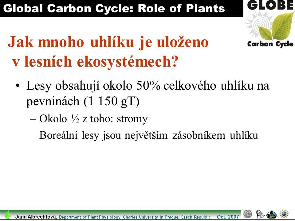 Lesy obsahují okolo 50% celkového uhlíku na pevninách (1 150 gT) –Okolo ½ z toho: stromy –Boreální lesy jsou největším zásobníkem uhlíku Global Carbon