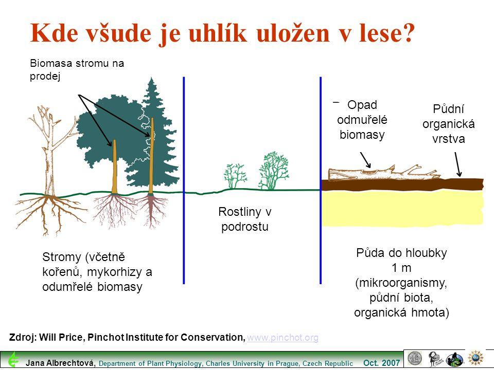 Biomasa stromu na prodej Stromy (včetně kořenů, mykorhizy a odumřelé biomasy Rostliny v podrostu Opad odmuřelé biomasy Půdní organická vrstva Půda do
