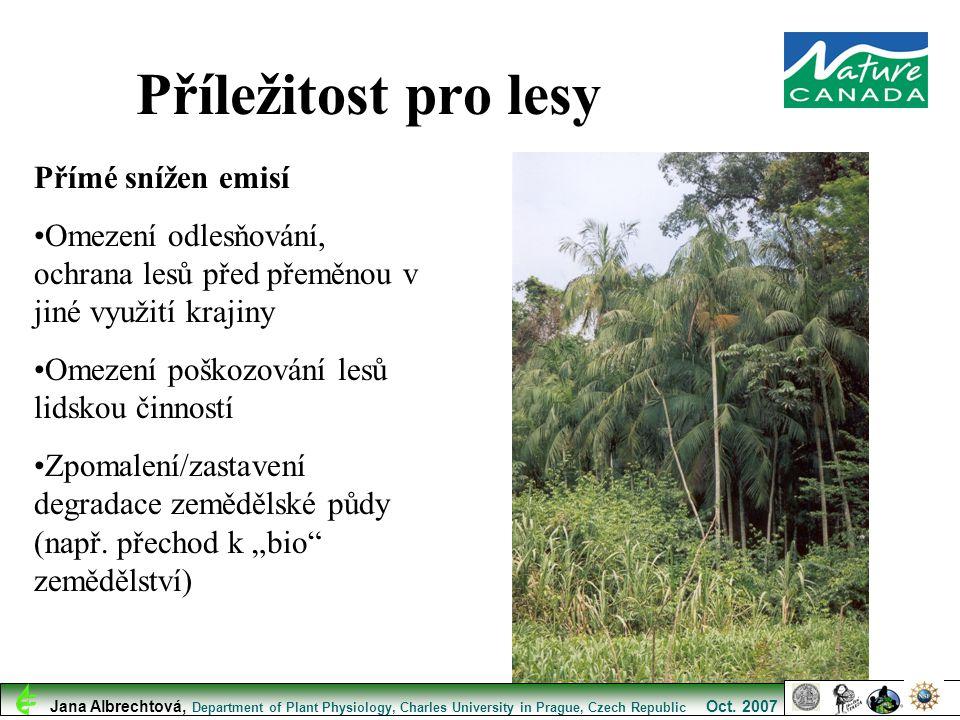 Příležitost pro lesy Přímé snížen emisí Omezení odlesňování, ochrana lesů před přeměnou v jiné využití krajiny Omezení poškozování lesů lidskou činnos