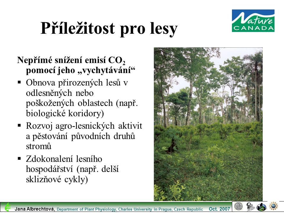 """Nepřímé snížení emisí CO 2 pomocí jeho """"vychytávání""""  Obnova přirozených lesů v odlesněných nebo poškožených oblastech (např. biologické koridory) """