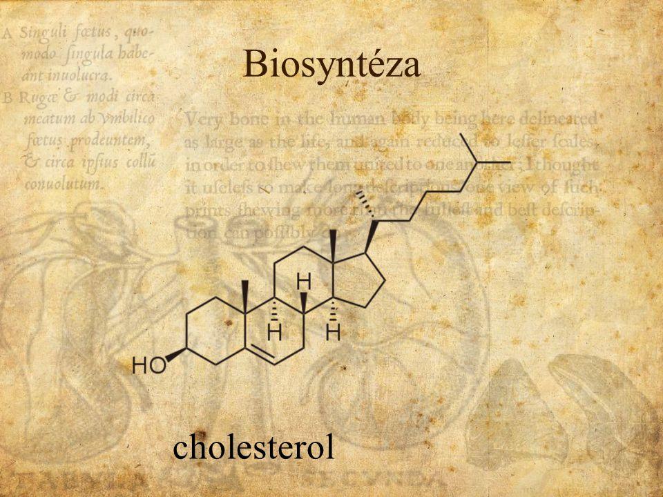 biosyntéza pregnenolonVol.Ch.Chol. HYDROLÁZA ODŠTEP POSTR.