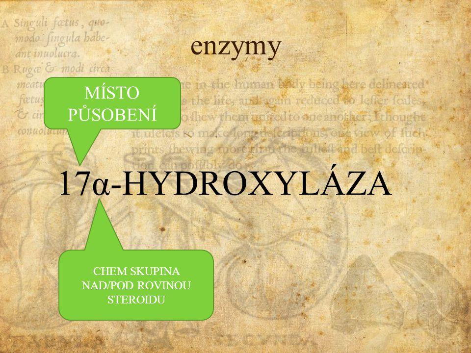 biosyntéza pregnenolonVol. Ch.Chol. HYDROLÁZA ODŠTEP POSTR. RETEZCE acth