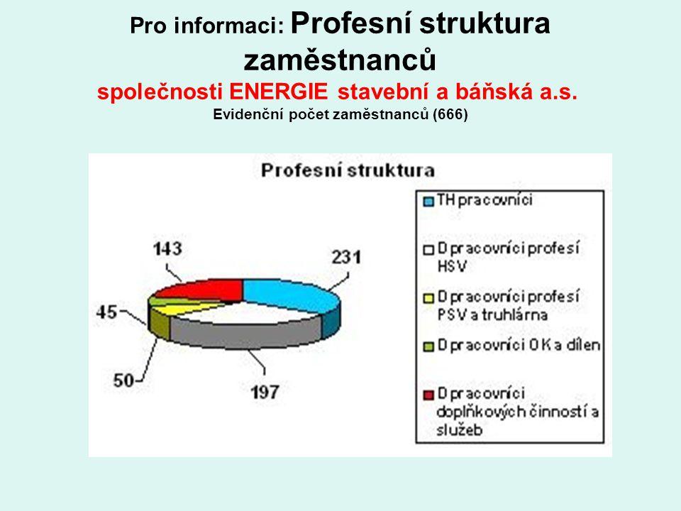 Pro informaci: Profesní struktura zaměstnanců společnosti ENERGIE stavební a báňská a.s. Evidenční počet zaměstnanců (666)