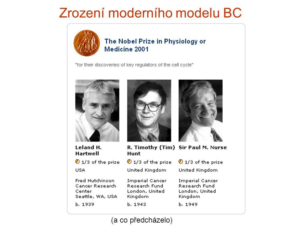 Zrození moderního modelu BC (a co předcházelo)