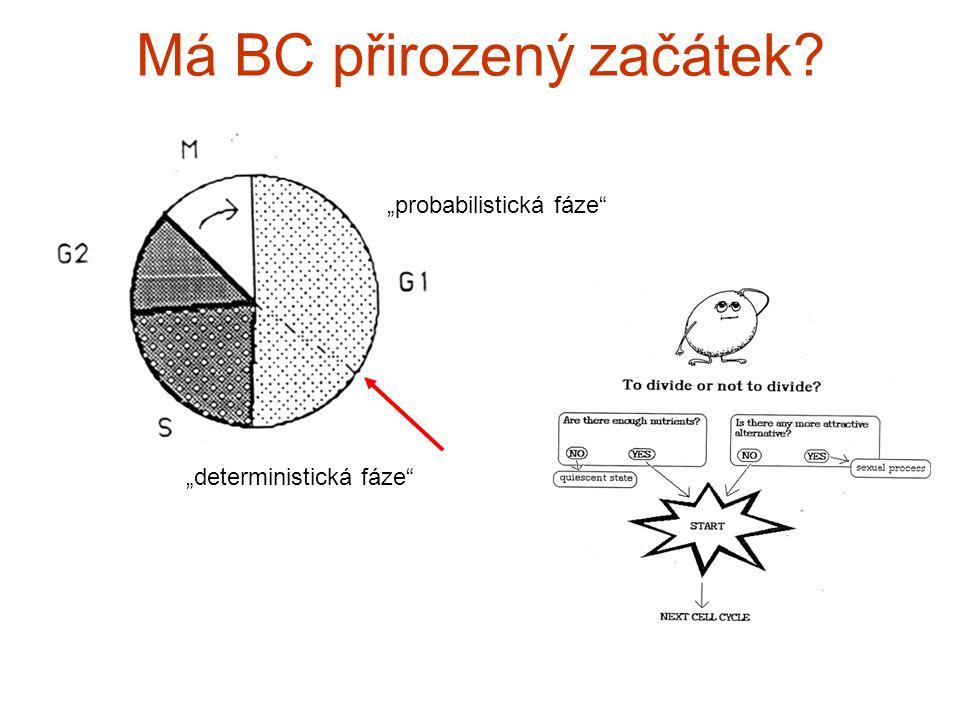"Má BC přirozený začátek ""probabilistická fáze ""deterministická fáze"