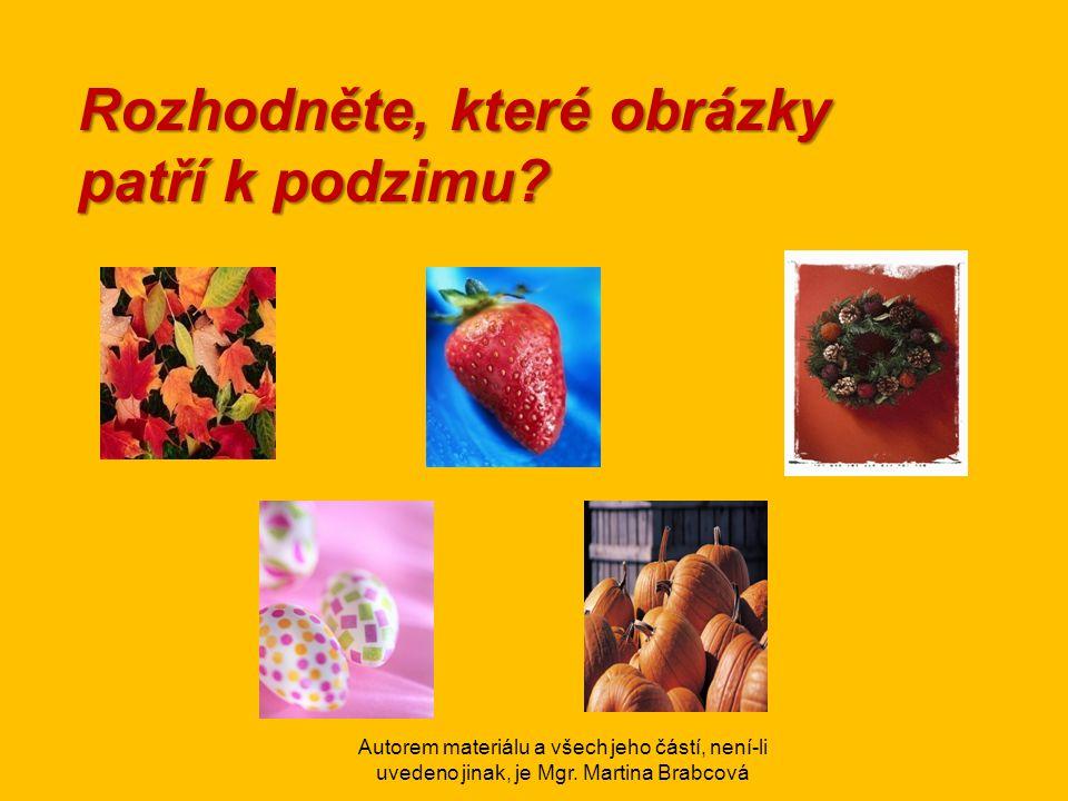 Rozhodněte, které obrázky patří k podzimu?