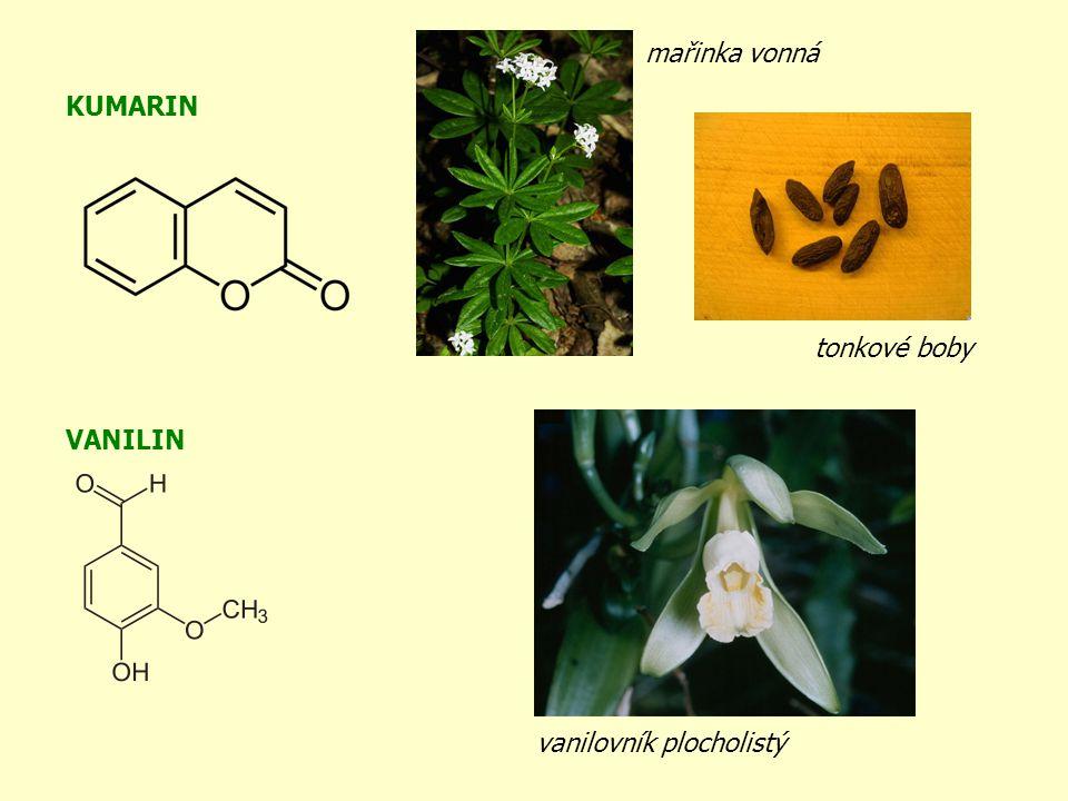 KUMARIN VANILIN vanilovník plocholistý tonkové boby mařinka vonná