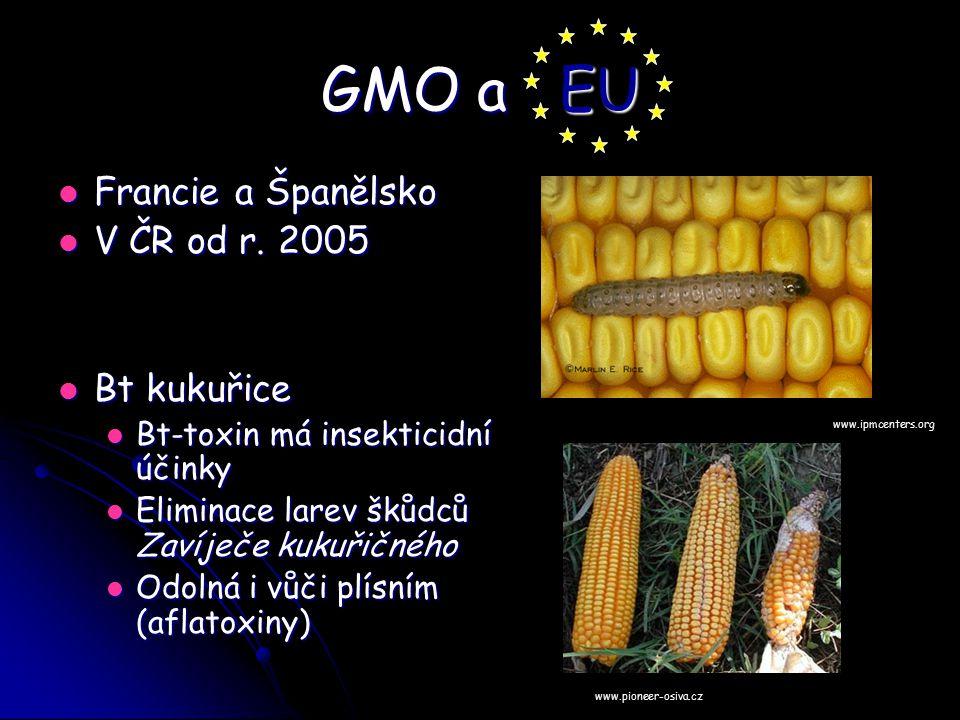 GMO a EU Francie a Španělsko Francie a Španělsko V ČR od r. 2005 V ČR od r. 2005 Bt kukuřice Bt kukuřice Bt-toxin má insekticidní účinky Bt-toxin má i