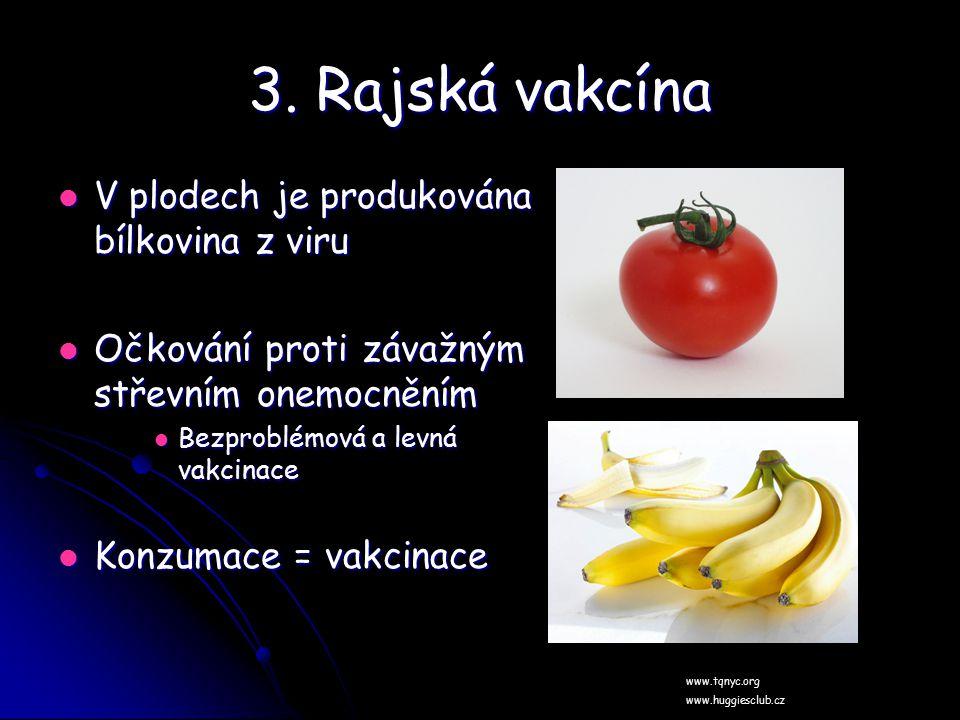 3. Rajská vakcína V plodech je produkována bílkovina z viru V plodech je produkována bílkovina z viru Očkování proti závažným střevním onemocněním Očk