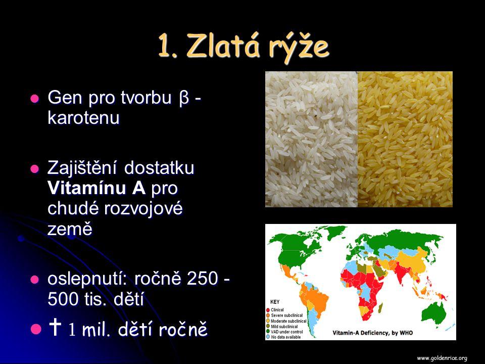 1. Zlatá rýže Gen pro tvorbu β - karotenu Gen pro tvorbu β - karotenu Zajištění dostatku Vitamínu A pro chudé rozvojové země Zajištění dostatku Vitamí