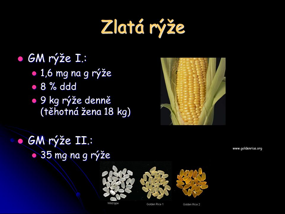 Zlatá rýže GM rýže I.: GM rýže I.: 1,6 mg na g rýže 1,6 mg na g rýže 8 % ddd 8 % ddd 9 kg rýže denně (těhotná žena 18 kg) 9 kg rýže denně (těhotná žen
