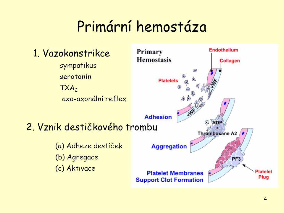 4 Primární hemostáza (a) Adheze destiček (b) Agregace (c) Aktivace 1. Vazokonstrikce 2. Vznik destičkového trombu sympatikus serotonin TXA 2 axo-axoná