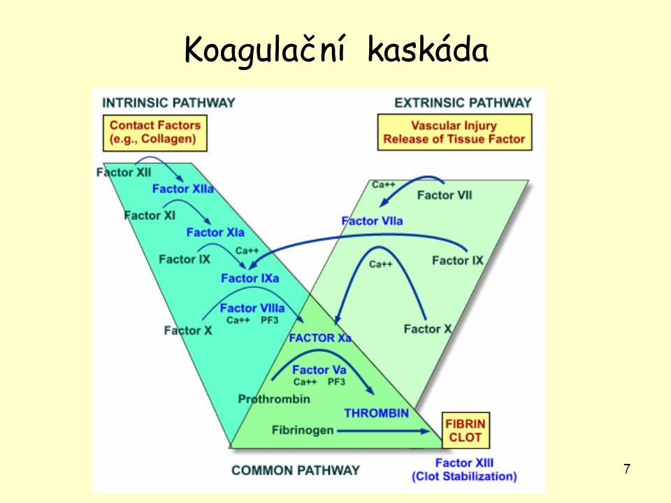 8 Inhibice adheze destiček, antikoagulace, fibrinolýza Prevence adheze a agregace destiček, prevence koagulace; fibrinolýza