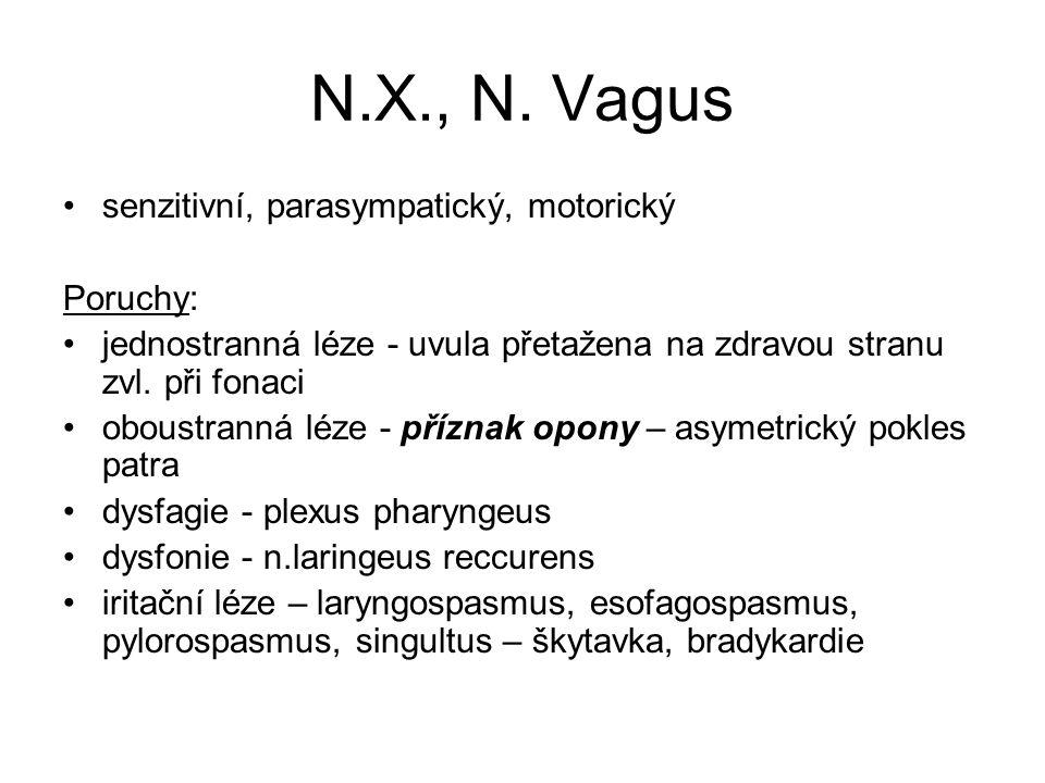 N.X., N.