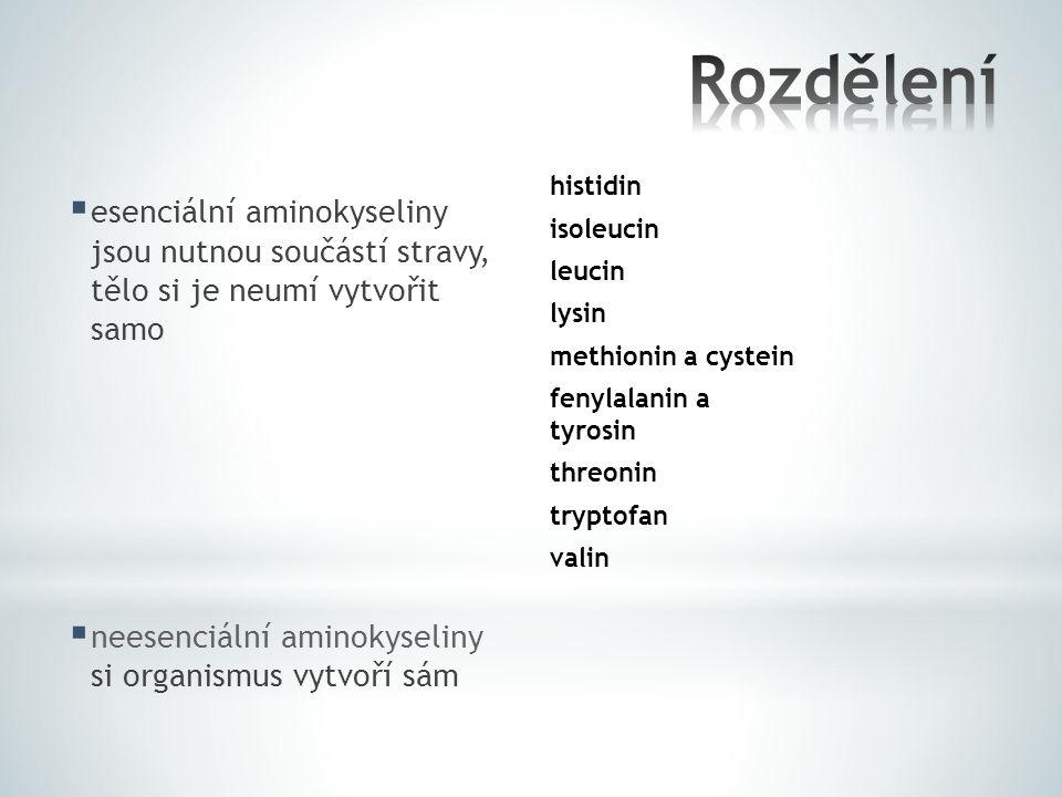  esenciální aminokyseliny jsou nutnou součástí stravy, tělo si je neumí vytvořit samo  neesenciální aminokyseliny si organismus vytvoří sám histidin