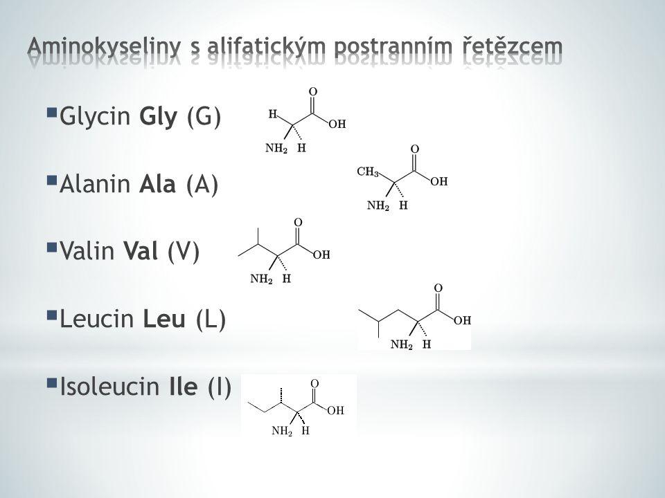 Glycin Gly (G)  Alanin Ala (A)  Valin Val (V)  Leucin Leu (L)  Isoleucin Ile (I)