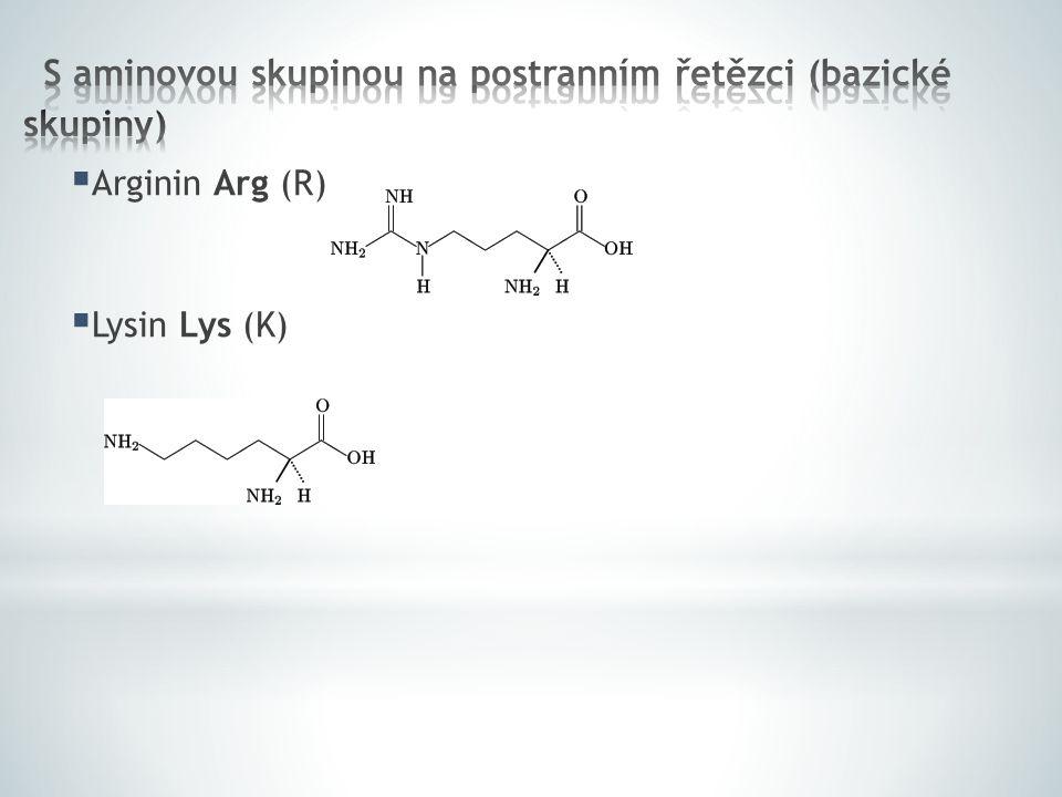  Histidin His (H)  Fenylalanin Phe (F)  Serin Ser (S)  Threonin Thr (T)  Tyrozin Tyr (Y)  Tryptofan Trp (W)
