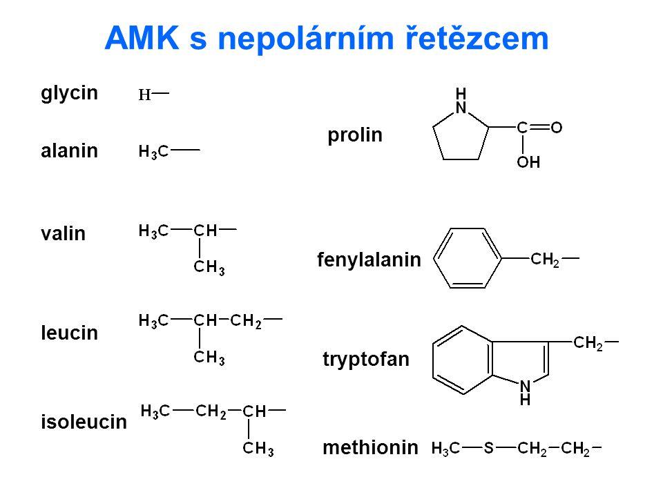AMK s nepolárním řetězcem glycin alanin leucin valin isoleucin prolin fenylalanin tryptofan methionin