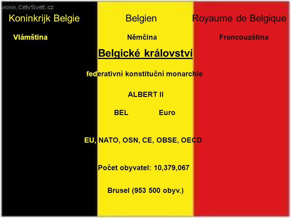 Jiří Tichý uvádí prezentaci THE BELGIE