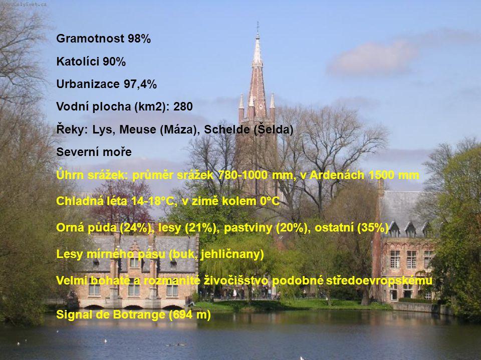 Francie, Lucembursko, Německo, Nizozemsko 30 510 km2 342 osob/km2 Vlámové (58%) Valoni (33%) Antverpy, Gent, Lovaň, Lutych, Mons, Ieper, Ostende, Arlo