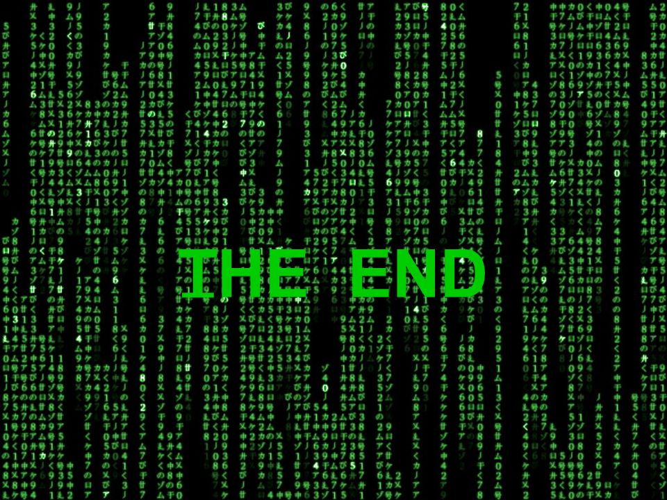 _ THE END