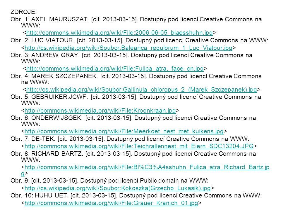 ZDROJE: Obr. 1: AXEL MAURUSZAT. [cit. 2013-03-15].