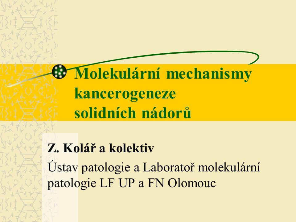 Molekulární mechanismy kancerogeneze solidních nádorů Z. Kolář a kolektiv Ústav patologie a Laboratoř molekulární patologie LF UP a FN Olomouc