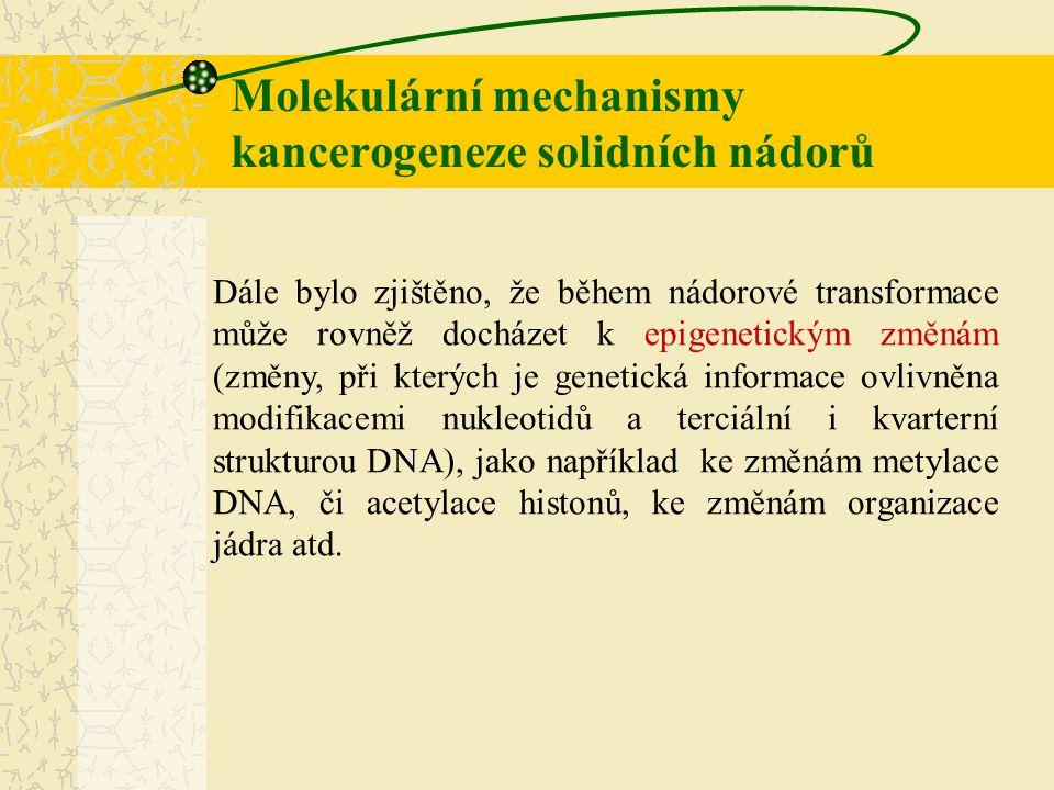 Molekulární mechanismy kancerogeneze solidních nádorů Dále bylo zjištěno, že během nádorové transformace může rovněž docházet k epigenetickým změnám (