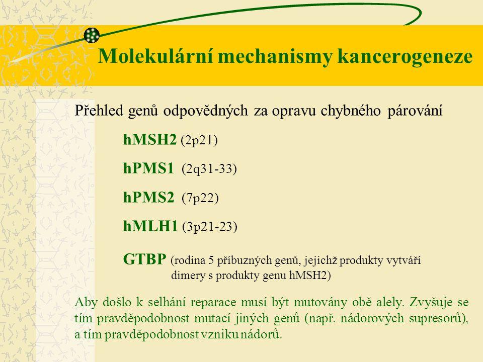 Molekulární mechanismy kancerogeneze Přehled genů odpovědných za opravu chybného párování hMSH2 (2p21) hPMS1 (2q31-33) hPMS2 (7p22) hMLH1 (3p21-23) GT