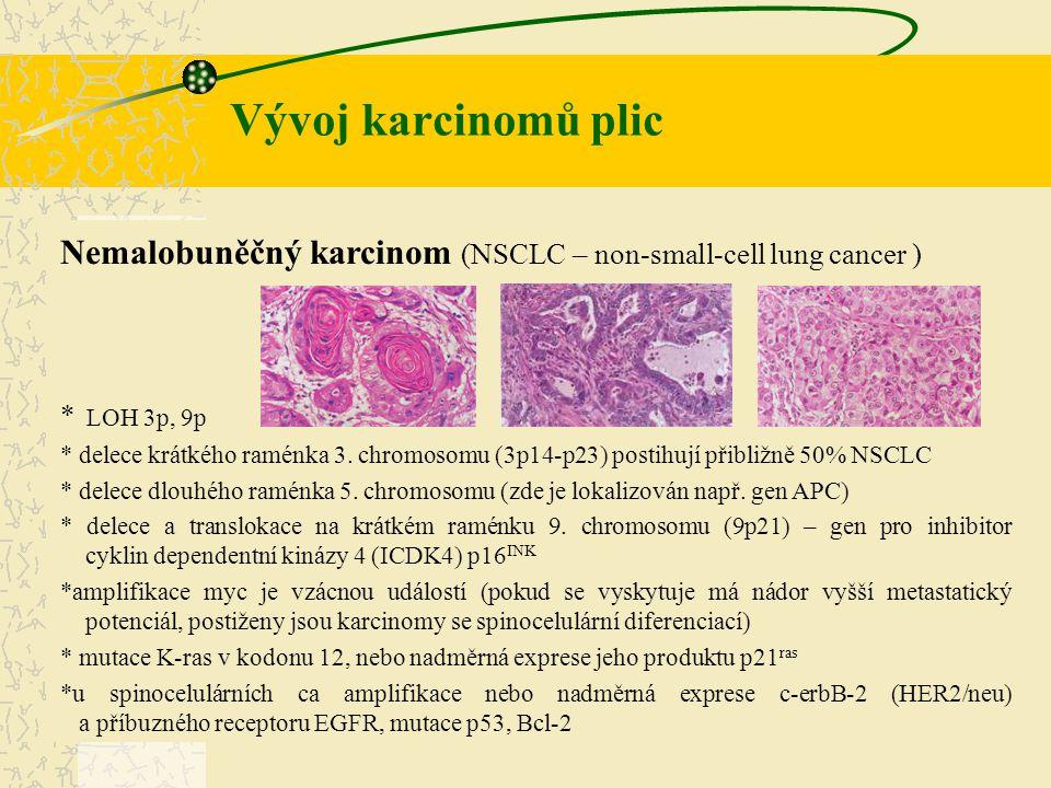 Nemalobuněčný karcinom (NSCLC – non-small-cell lung cancer ) * LOH 3p, 9p * delece krátkého raménka 3. chromosomu (3p14-p23) postihují přibližně 50% N