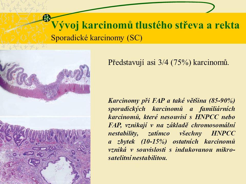 Vývoj karcinomů tlustého střeva a rekta Sporadické karcinomy (SC) Představují asi 3/4 (75%) karcinomů. Karcinomy při FAP a také většina (85-90%) spora