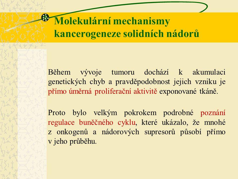 VlastnostTyp ITyp II Histologický typendometroidnínon-endometroidní Věknižšívyšší Menopauzální stavpre- a perimenopauzapostmenopauza Hyperplasie předcházíanone Invaze do myometriaminimálníhluboká Estrogen dependentníanone Biologické chovánípomalu progredujícírychle progredující Stupeň (grade)nízkývysoký Prognózadobrášpatná Mikrosatelitní nestabilitaanone Ztráta heterozygosity (LOH)neano Alterace genů proPTEN, β-kateninp53