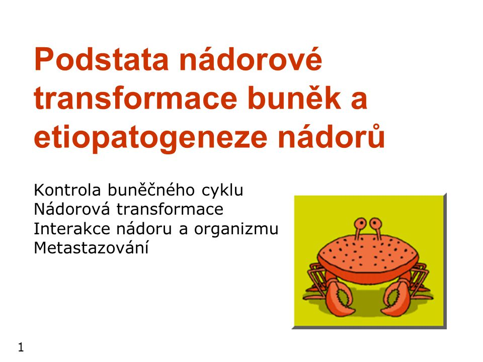 1 Podstata nádorové transformace buněk a etiopatogeneze nádorů Kontrola buněčného cyklu Nádorová transformace Interakce nádoru a organizmu Metastazová