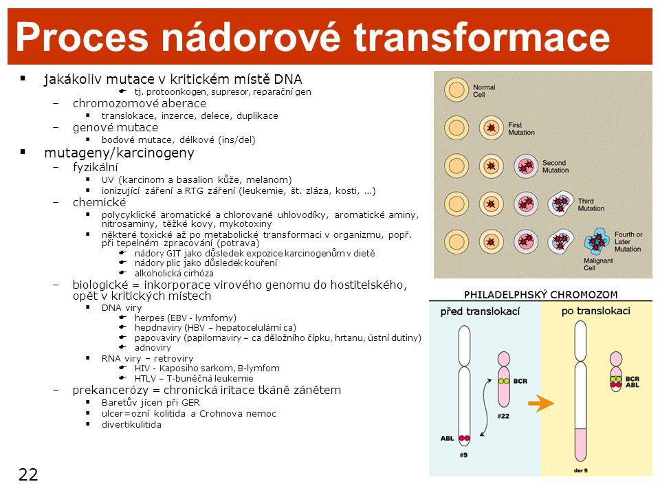 22 Proces nádorové transformace  jakákoliv mutace v kritickém místě DNA  tj. protoonkogen, supresor, reparační gen –chromozomové aberace  transloka
