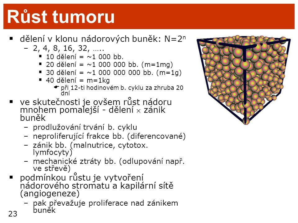 23 Růst tumoru  dělení v klonu nádorových buněk: N=2 n –2, 4, 8, 16, 32, …..  10 dělení = ~1 000 bb.  20 dělení = ~1 000 000 bb. (m=1mg)  30 dělen