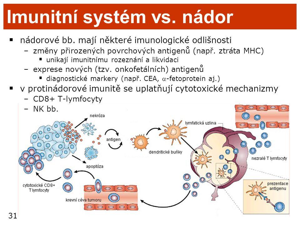 31 Imunitní systém vs. nádor  nádorové bb. mají některé imunologické odlišnosti –změny přirozených povrchových antigenů (např. ztráta MHC)  unikají