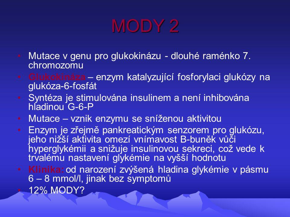 MODY 2 Mutace v genu pro glukokinázu - dlouhé raménko 7.