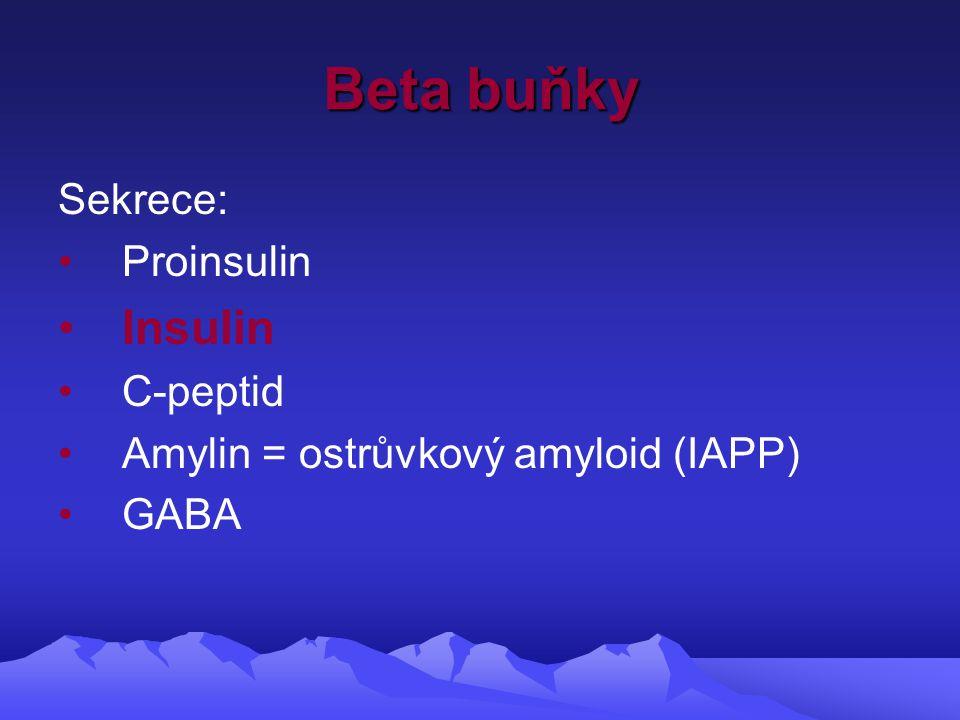 Beta buňky Sekrece: Proinsulin Insulin C-peptid Amylin = ostrůvkový amyloid (IAPP) GABA