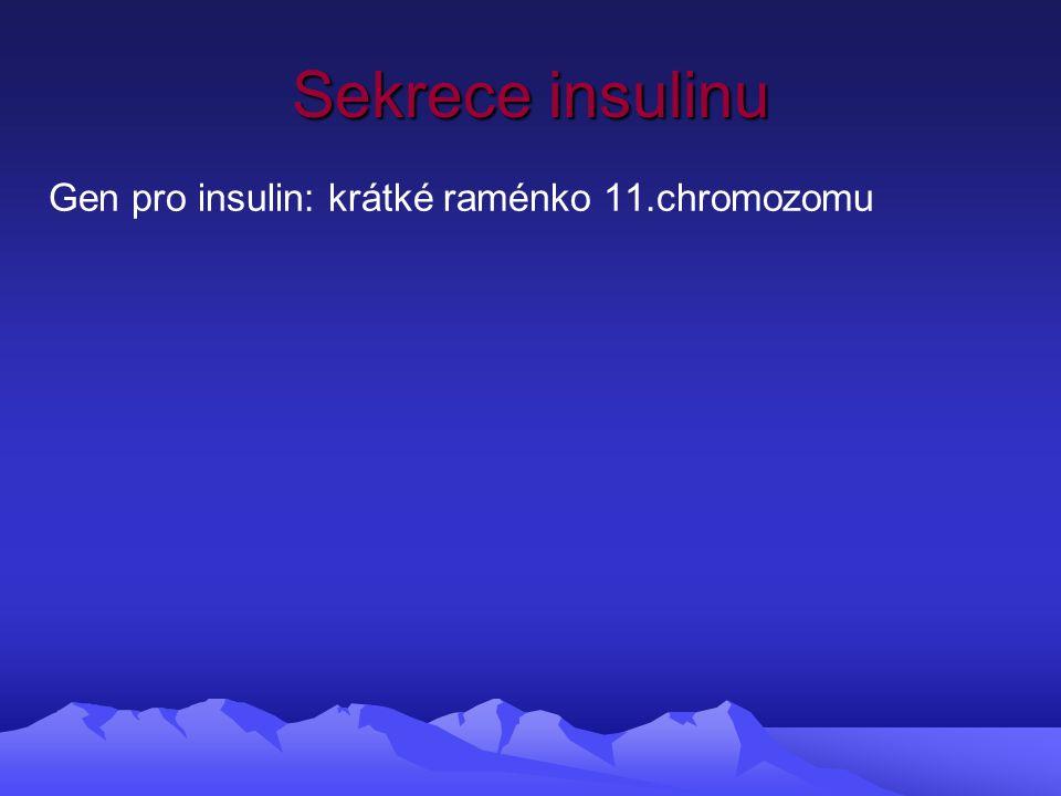 Sekrece insulinu Gen pro insulin: krátké raménko 11.chromozomu