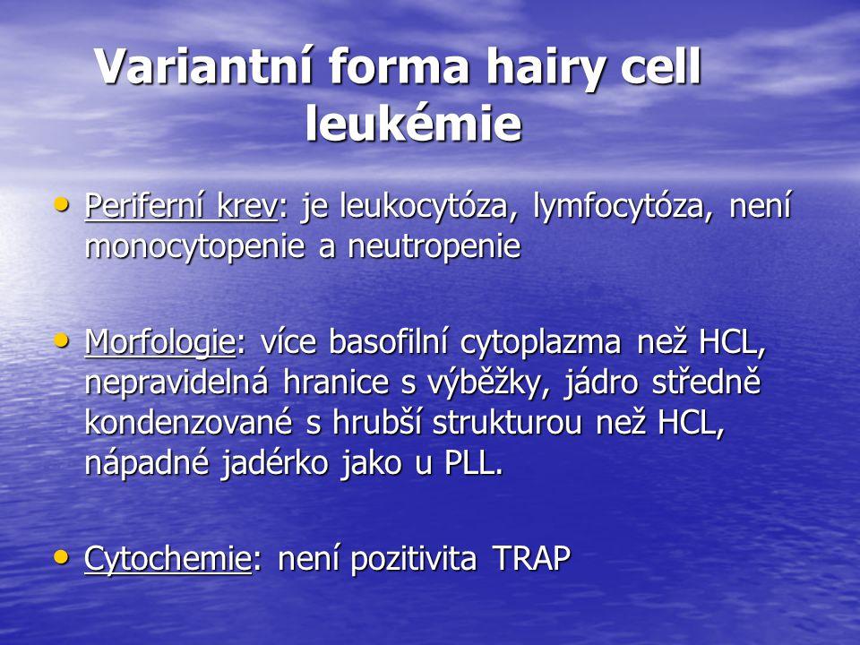 Variantní forma hairy cell leukémie Variantní forma hairy cell leukémie Periferní krev: je leukocytóza, lymfocytóza, není monocytopenie a neutropenie