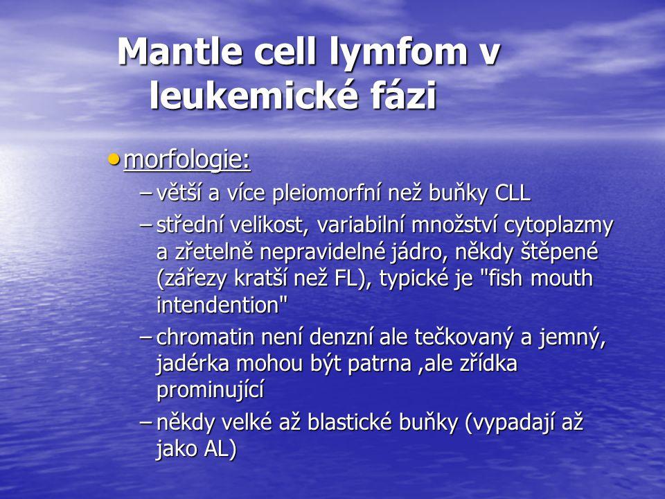 Mantle cell lymfom v leukemické fázi Mantle cell lymfom v leukemické fázi  morfologie: –větší a více pleiomorfní než buňky CLL –střední velikost, var