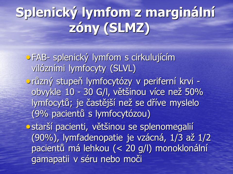 Splenický lymfom z marginální zóny (SLMZ) Splenický lymfom z marginální zóny (SLMZ)  FAB- splenický lymfom s cirkulujícím vilózními lymfocyty (SLVL)