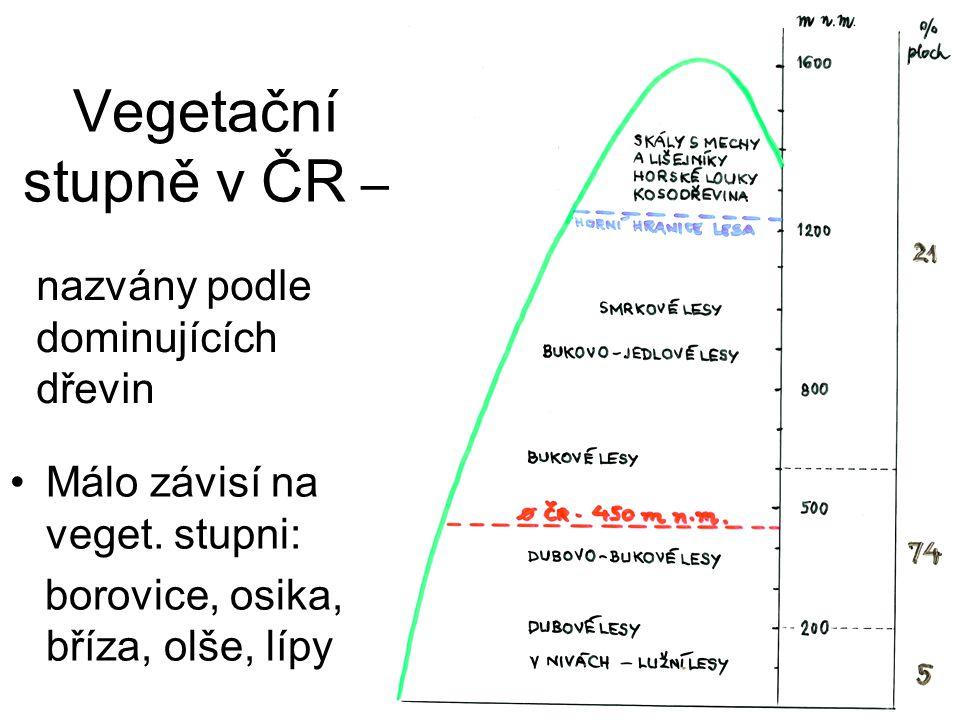Vegetační stupně v ČR – Málo závisí na veget. stupni: borovice, osika, bříza, olše, lípy nazvány podle dominujících dřevin